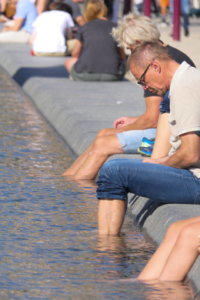 Stauden können bei extremem Wetter eine Lösung sein