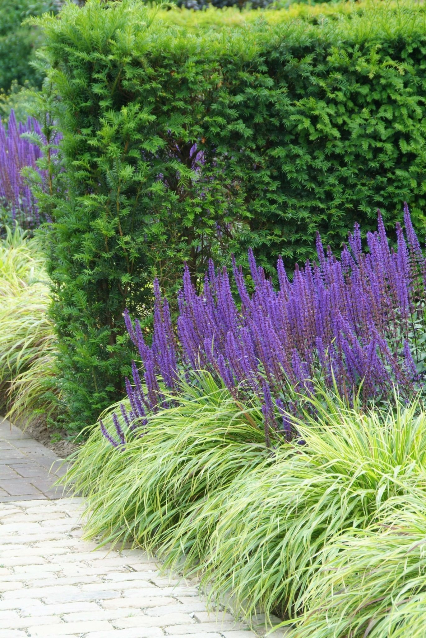 Garten inspiration perennial power - Garten inspiration ...