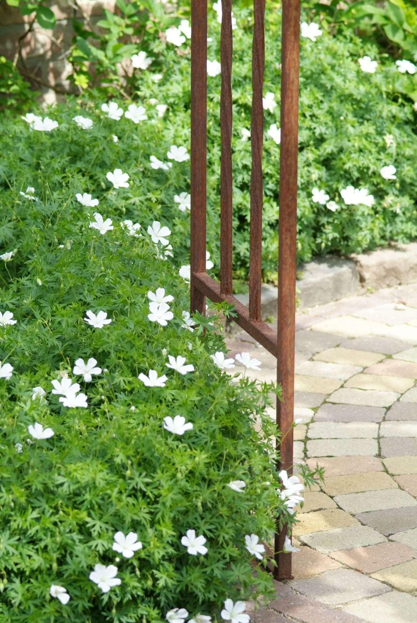 Garten inspiration perennial power for Garten inspiration